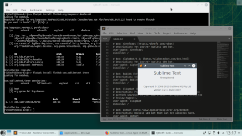 openSUSE 15.1 -- Sublime Text как Flatpak