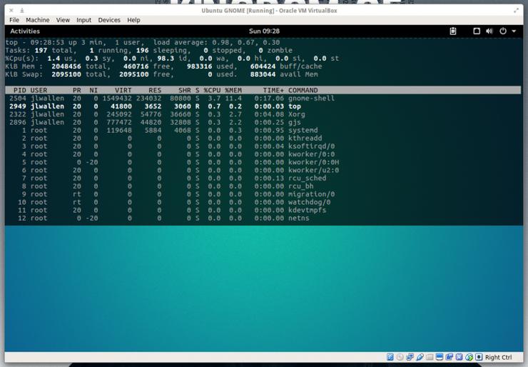 Команда top, исполняющаяся с помощью терминала на основе расширения Drop Down Terminal